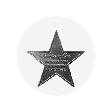 Premio Estrella de Oro a la excelencia profesional