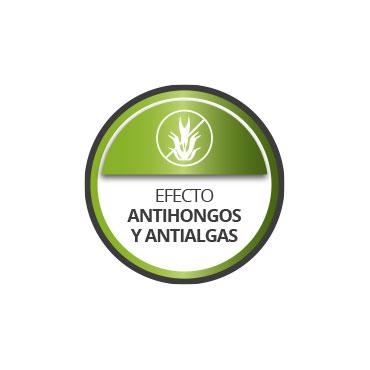 Efecto antihongos y antialgas